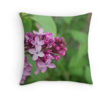 Due East Throw Pillow