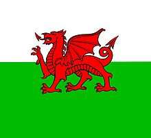 Flag Of Wales by ImageMonkey