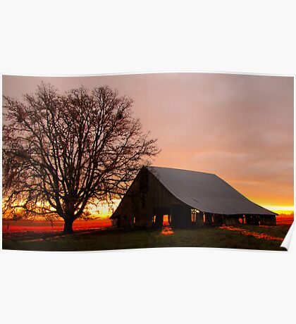 Sunrise at the Old Sheep Barn Poster