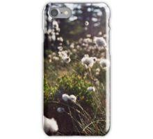 Sedge puffs iPhone Case/Skin