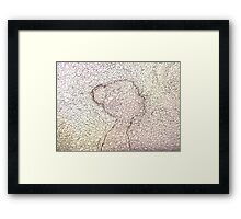 women like fairy tale Framed Print