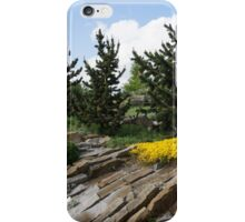 Rock Garden With Pines iPhone Case/Skin