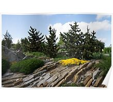Rock Garden With Pines Poster
