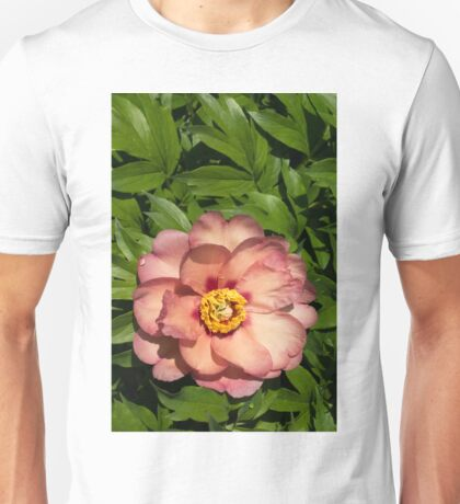 Exotic Beauty - Unusual Peony Basking in the Sunshine - a Vertical View Unisex T-Shirt
