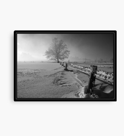 Tough winter Canvas Print