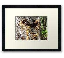 Angry Tree Face Framed Print