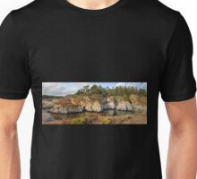 China Cove, Point Lobos Unisex T-Shirt