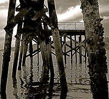 low tide by bron stadheim
