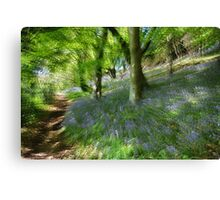 Whacky Bluebell Wood  Canvas Print