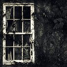 window(2) by Angel Warda
