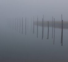 Foggy Morning at the Marina by Gilda Axelrod