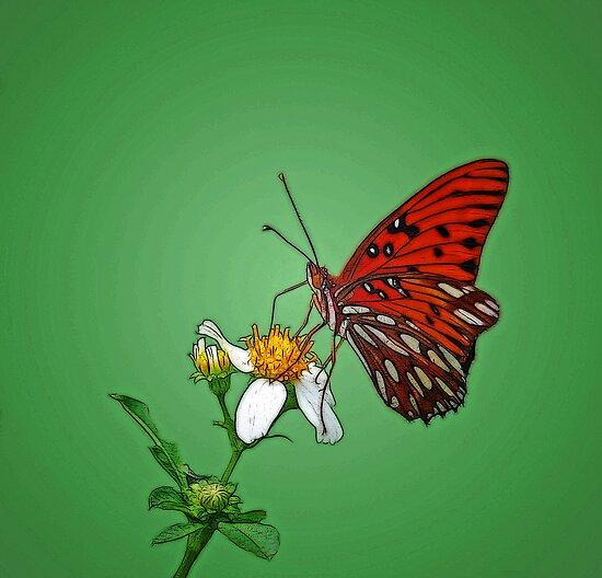 Nectar Drinking by glink