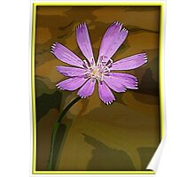 Canvas Series #3 Poster