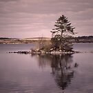 Mochrum Loch, Wigtownshire, Scotland by sarnia2