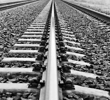 On Tracks by csouzas