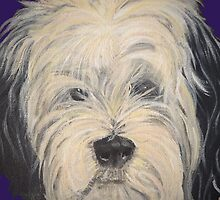 Tibetan Terrier by Dragonfairy
