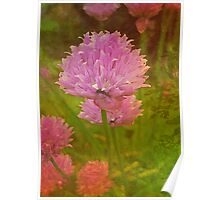 ~ Textured Chives ~ Poster