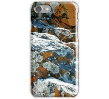 Colouful Rocks at Rocky Cape National Park, Tasmania, Australia. iPhone Case/Skin