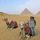 Camel Tour of Giza by Jessica Dzupina