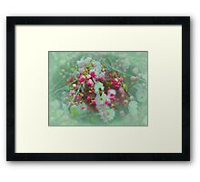 Bees & Blossoms II Framed Print