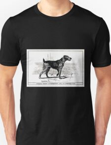 All about dogs a book for doggy people Charles Henry Lane 1900 0231 Airedale Terrier_jpg T-Shirt