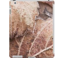 Frosted Decay iPad Case/Skin