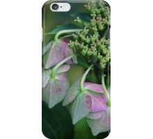Summer's Fading Beauty iPhone Case/Skin
