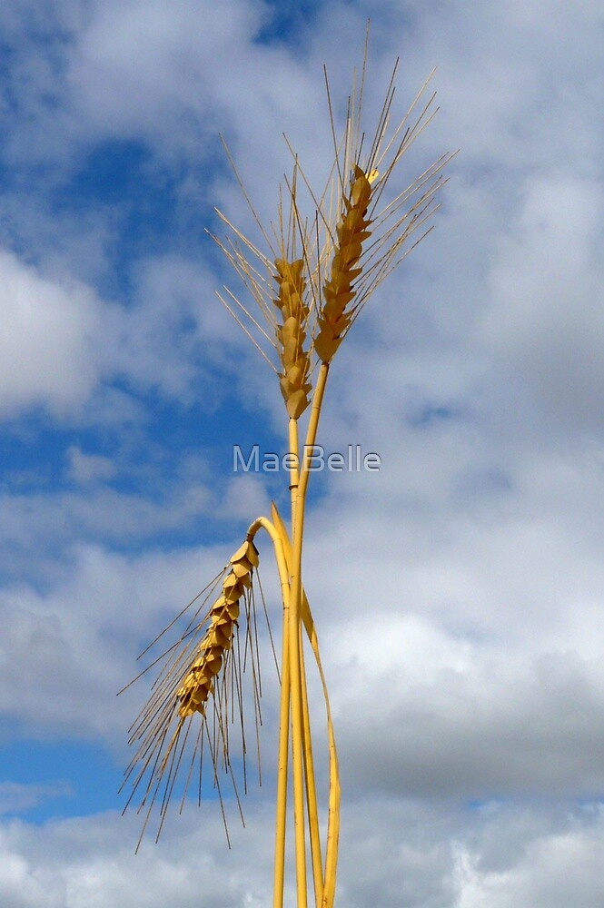 Wheat Stalk Statue by MaeBelle