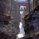 Athabasca Gorge (2) by Jann Ashworth