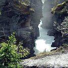 Athabasca Gorge (3) by Jann Ashworth