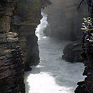 Athabasca Gorge (4) by Jann Ashworth