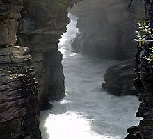 Athabasca Gorge (4) by Jann Ashworth
