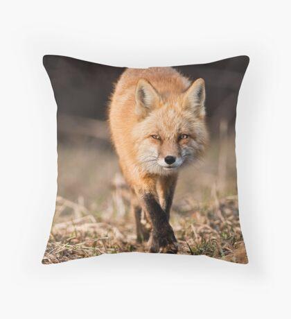 Approaching Throw Pillow