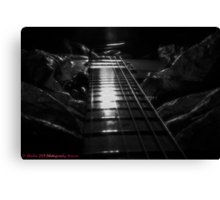 Down the Plank. Canvas Print