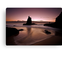 The Dawn Photographer Canvas Print