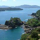 Roberton Island, Bay of Islands, New Zealand by Roy  Massicks