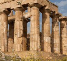 Temple of Hera  Sticker