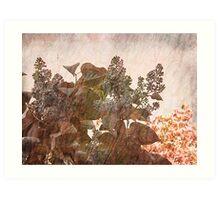 lilac swing  Art Print