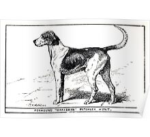 All about dogs a book for doggy people Charles Henry Lane 1900 0041 Foxhound_jpg Poster