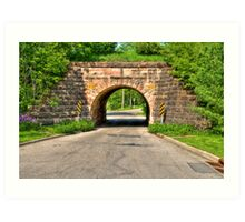 Lakeview Park Tunnel Art Print