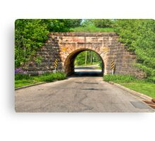 Lakeview Park Tunnel Metal Print