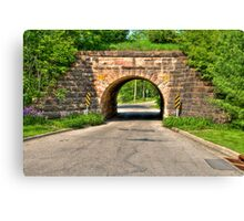 Lakeview Park Tunnel Canvas Print