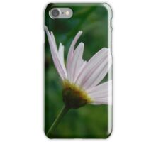Pink Daisy in Bloom iPhone Case/Skin