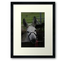 Saying G'day Framed Print