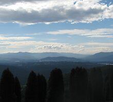 Yarra Valley by mrsnatetah