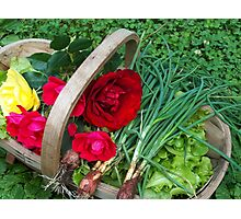 Basket of Roses and Veggies Photographic Print