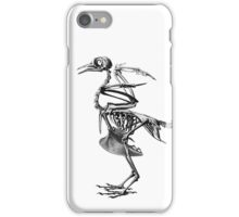 bird skeleton iPhone Case/Skin