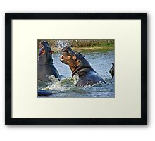 crossing the comfort zone Framed Print