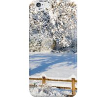 Snowy Scene iPhone Case/Skin