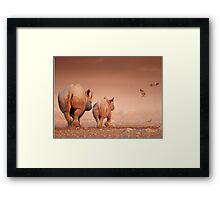 Black Rhino cow and calf Framed Print
